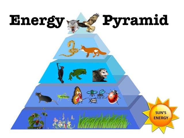 Play Energy Pyramid DPISD by Rachelle Corry - on TinyTap